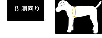 C.胴周り